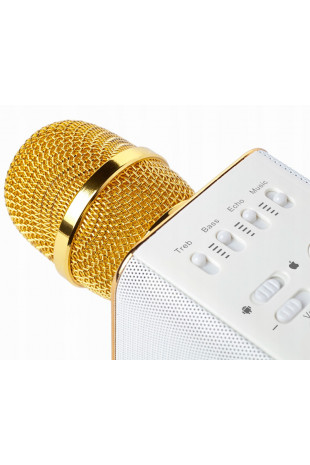 Mikrofon głośnik karaoke...